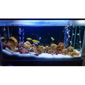 Aqua LED MAVİ & BEYAZ AYDINLATMA