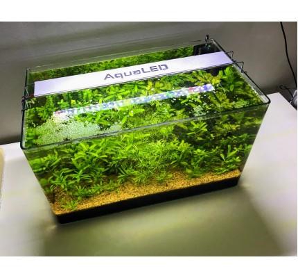 AQUA LED PLANT FULL SPECTRUM 4 RENK ÖZEL DİZİLİM